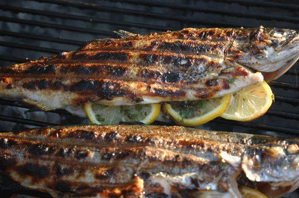 Какую рыбу приготовить на мангале