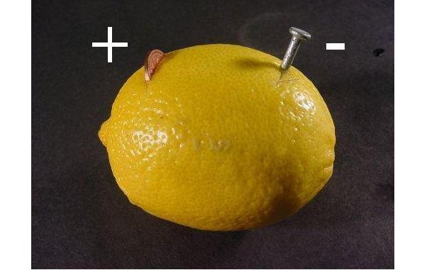 Источник энергии из лимона: делаем своими руками