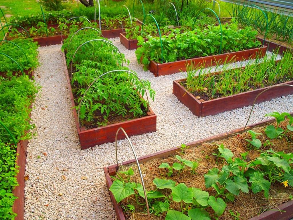 Оригинальное оформление огорода: делаем своими руками