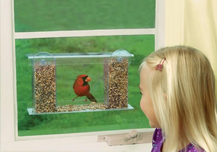 Кормушка для птиц своими руками: оригинальное решение