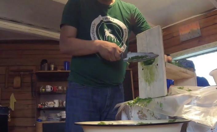 Станок для резки зеленого лука: мастерим своими руками