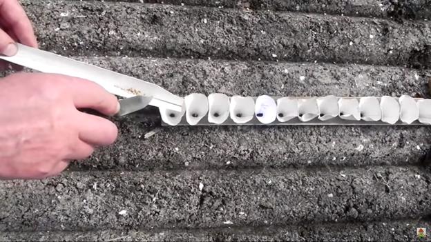 Оригинальный способ посева семян: делаем своими руками