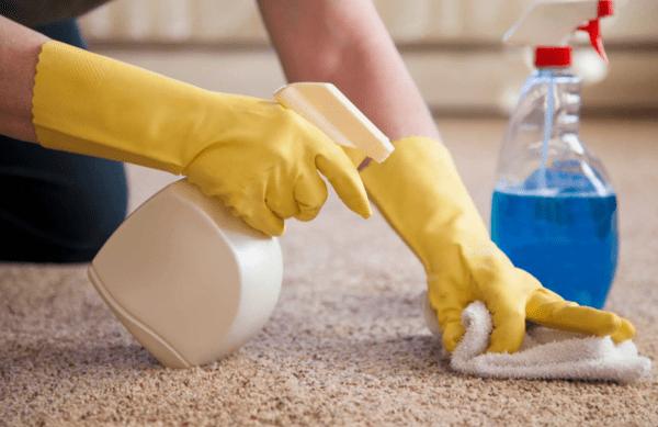 Как правильно и быстро очистить ковер