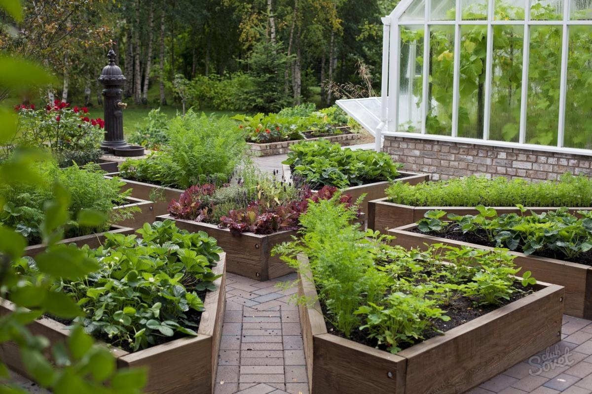 Оформление сада: делаем своими руками
